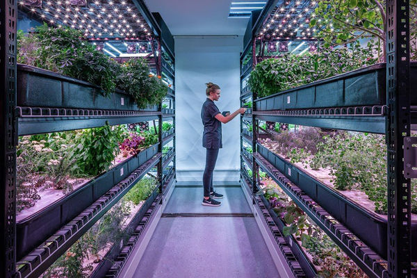 25 Indoor Urban Farming Examples