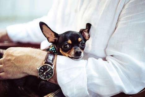 Corporate Pet Visitation Programs