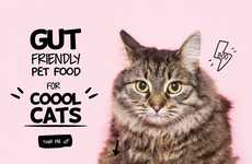 Gut-Friendly Pet Foods