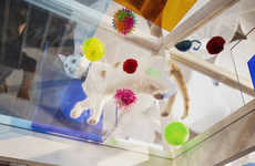 Glass-Ceilinged Cat Pop-Ups - The Cats on Glass Gallery Features Shelter Cats & Low-Tracking Litter