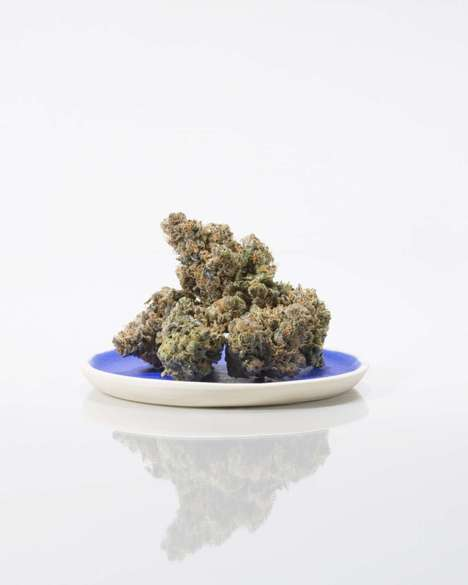 Citrus Dessert Cannabis Strains - Serra's Key Lime Pie Blend Boasts Lime Candy and Mint Flavors