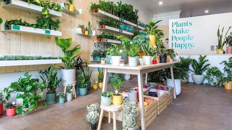 Wellness-Centric Plant Shops - 'The Sill' Appeals to Millennials from a Self-Care Perspective