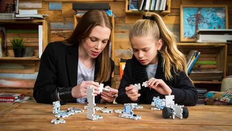 Interactive Robotic Puzzle Toys