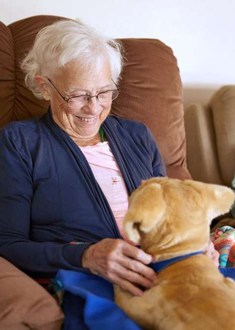 Therapeutic Canine Robots - Tombot Robotics Designed a Realistic Puppy for Dementia Therapy