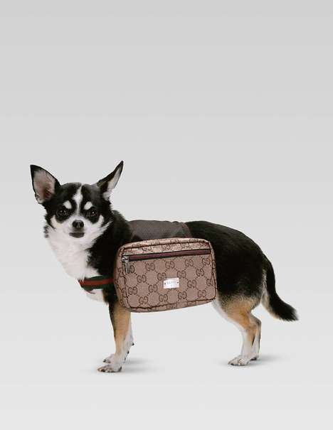 The Gucci Dog Backpack