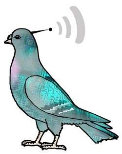 Remote Controlled Live Animals - Control the Flight of a Pigeon Using Microelectrodes