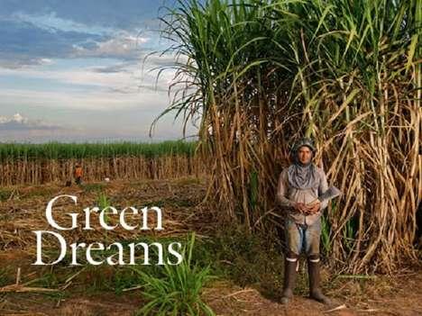 Sugarcane Ethanol
