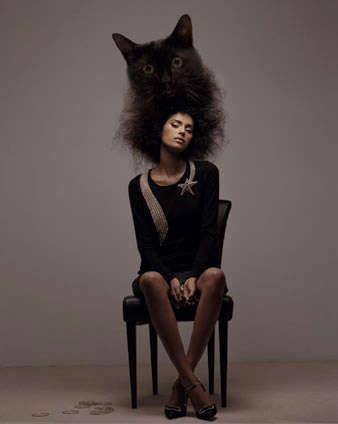 Human Cat Hair