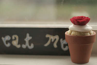 Flower Pot Cupcakes - The Perfect Dessert For Garden Parties or Mothers Day Bashes