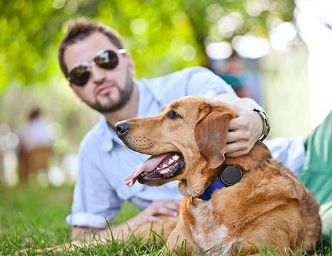 AI-Powered Canine Trackers - The Mishiko Dog GPS Tracker Offers Real-Time Updates