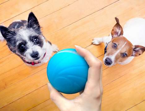 Smart App-Free Pet Toys - The Cheerble 'Wicked Ball' Keeps Cats and Dogs Busy for Extended Periods