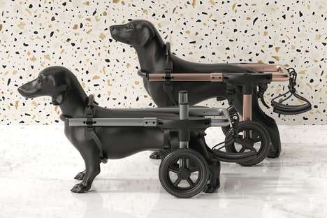 Canine Mobility Support Solutions - This Pet Wheelchair Supports Dogs as They Grow and Recover