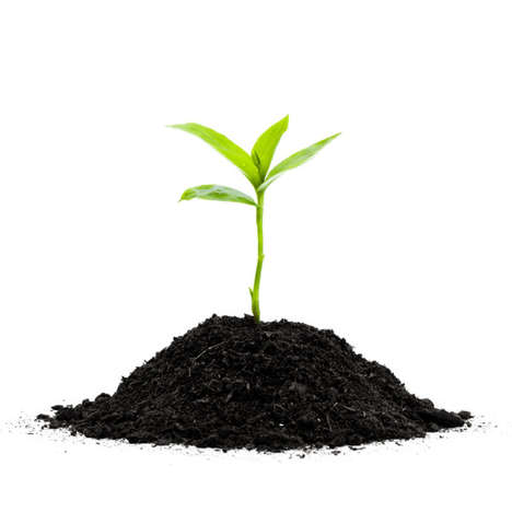Eco-Friendly Soil Food Products