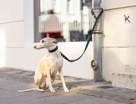 Theft-Proof Canine Leashes
