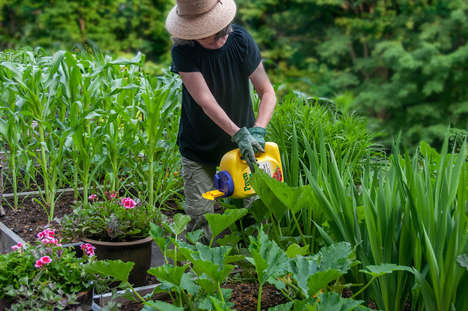 Millennial-Targeted Gardening Products