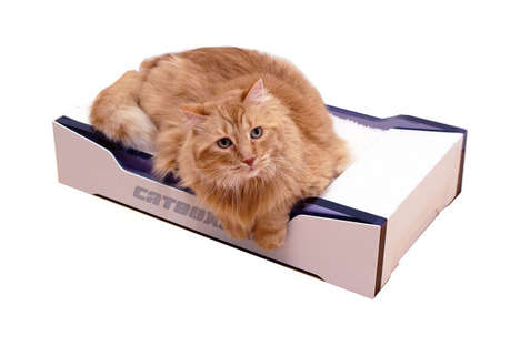 Self-Flushing Litter Boxes - The 'Catboxpro' Automatically Disposes of Pet Waste