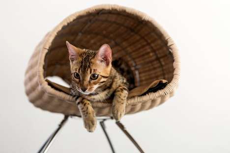 17 Examples of Feline-Friendly Furniture - From Intergalactic Cat Beds to Chic Cat-Friendly Condos
