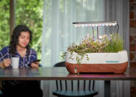Self-Sufficient Indoor Gardens