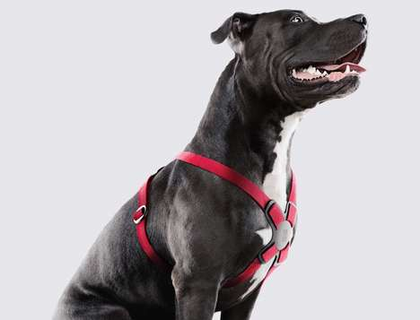 Quick-Release Dog Harnesses - The Conceptual Purina Dog Harness Comes Off with No Hassles