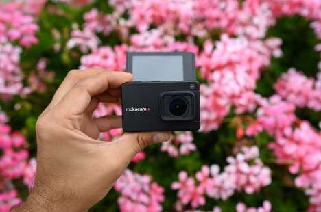 Self-Stabilizing Portable Cameras
