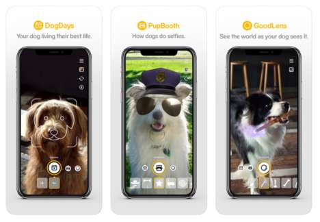 Dog-Centric Social Apps