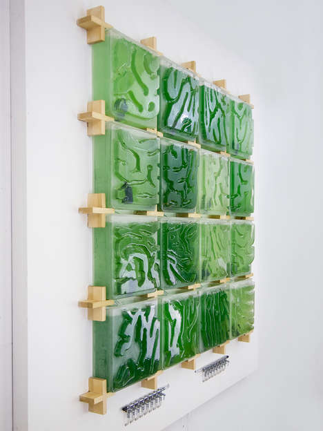 Modular Micro-Algae Walls