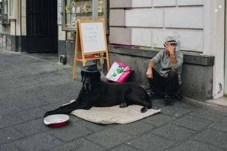 Homeless Pet Initiatives