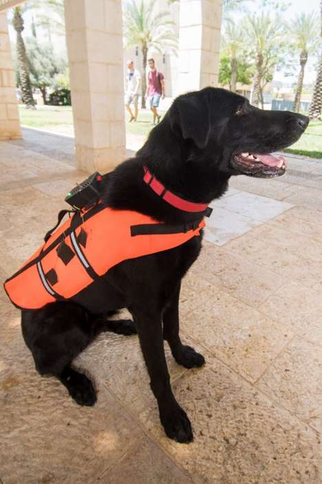 Vibrating Service Dog Vests - This Canine Vest Helps Owners Command Dogs via Vibrational Cues