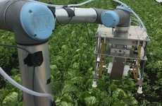 AI-Powered Harvesting Robots