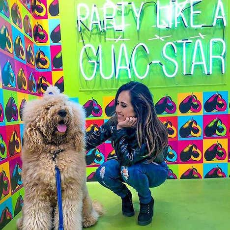 Dog-Friendly Taco Exhibits
