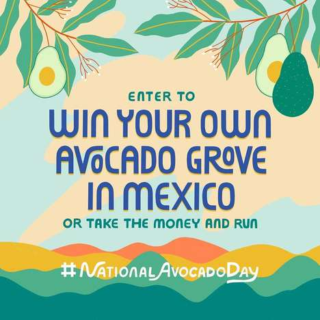 Avocado Grove Giveaways