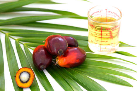 Lab-Grown Palm Oils