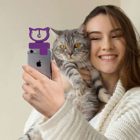 Feline Photography Accessories