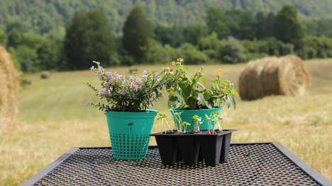 Biodegradable Flower Pots