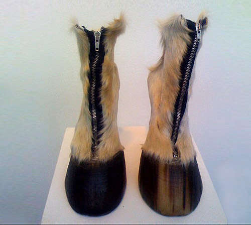 Taxidermy Footwear