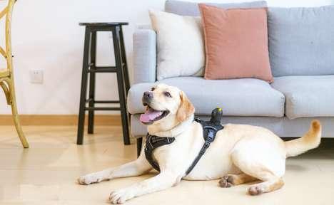 POV Wearable Pet Cameras
