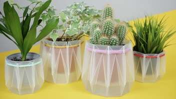 Eco-Friendly Self-Watering Pots
