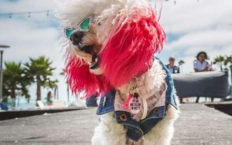 Dedicated Doggy Festivals
