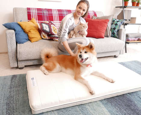 Fully Washable Dog Beds