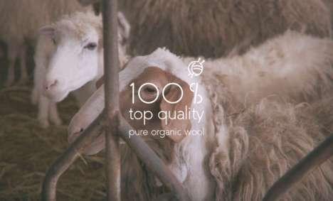 Circular Organic Wool Sweaters