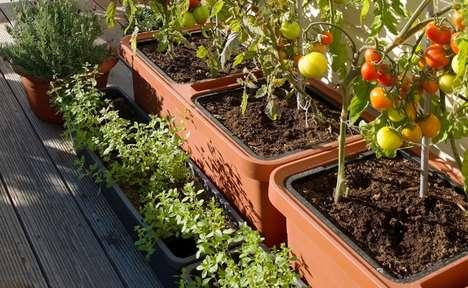 Self-Care Garden Planters