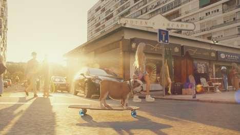 Serene Dog-Centric Insurance Ads