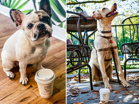 Seasonal Pet-Friendly Lattes