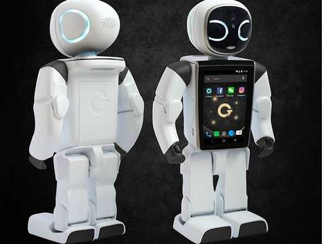Interactive Companion Robots
