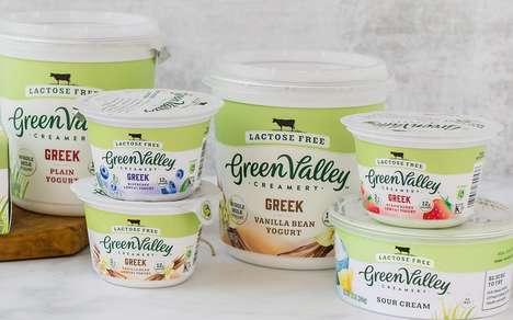Probiotic Lactose-Free Yogurts