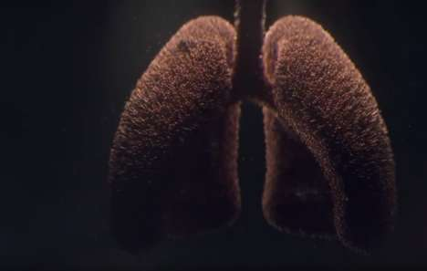 Lung Cancer Awareness Ads