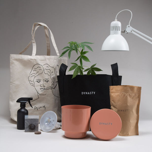 50 Gifts for Gardeners