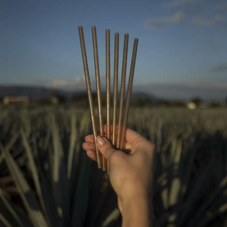 Agave-Based Drinking Straws