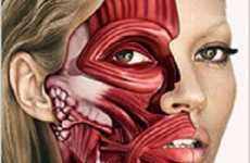 Skinned Supermodels - Damien Hirst's Inspired (or Plagarized) Kate Moss Cover