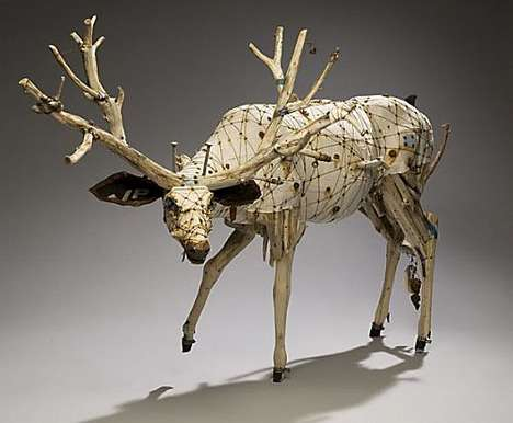 Eco Taxidermy